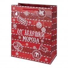 Пакет подарочный «От Дедушки Мороза» 18x23 см