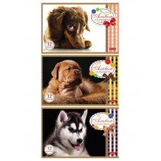 Альбом для рисования 12л А5 Sweet pets 051883