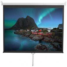 """100"""" (254 см) Экран для проектора Digis Optimal-D DSOD-4303"""