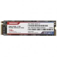 1024 ГБ SSD M.2 накопитель Tammuz GKV700 [TGV701TBS63]