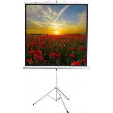 """100"""" (254 см) Экран для проектора Digis Kontur-D DSKD-1105"""